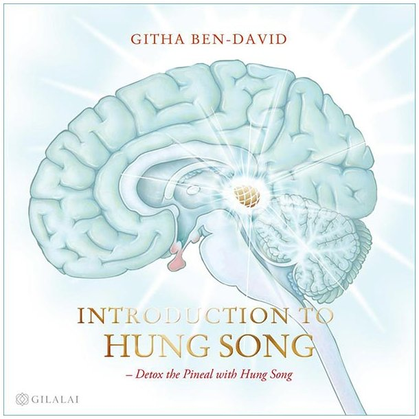 Introduction to Hung Song - engelsk udgave (mp3-download)